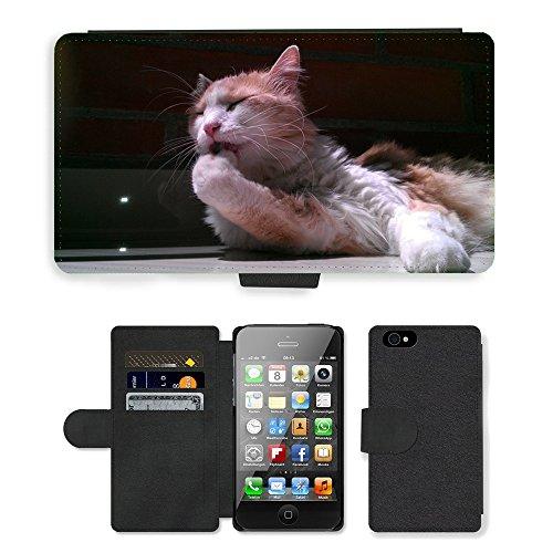 Just Phone Cases PU Leather Flip Custodia Protettiva Case Cover per // M00128598 Mignon Cat Cat Cat Visage Animaux de // Apple iPhone 4 4S 4G