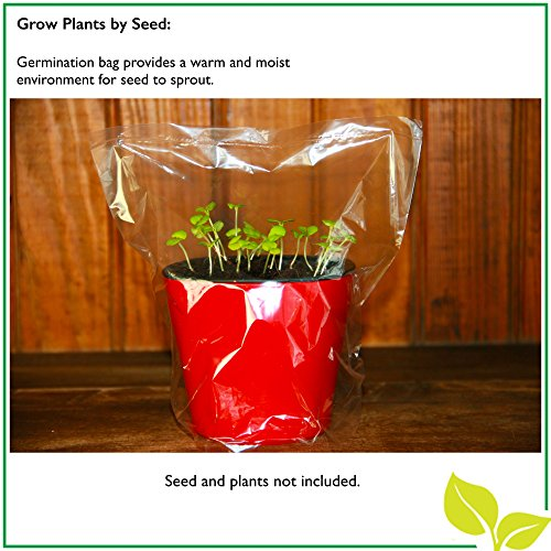 "Self Watering Mini 3.5"" Planter Pots (3 Pack IVORY) Grow a Indoor Window Sill Garden. Perfect for Potting Smaller House Plants, Herbs, African Violets, Succulents, Flowers or Start Seedlings."