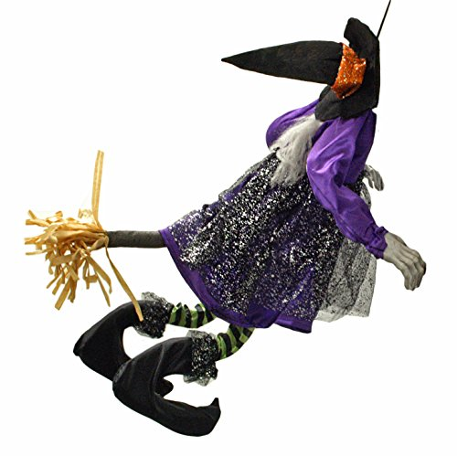 Animated Witch Crashing on Broom Halloween Door & Wall Hanger (Animated Witches Broom compare prices)