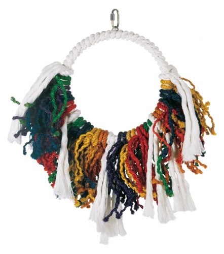 Living World Jumbo Rope Dream Catcher ()