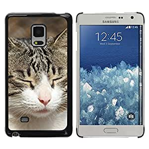 Be Good Phone Accessory // Dura Cáscara cubierta Protectora Caso Carcasa Funda de Protección para Samsung Galaxy Mega 5.8 9150 9152 // American Shorthair British House Cat