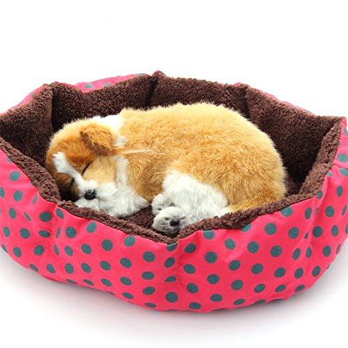 JUNGEN Cama para Mascotas Suave y Acogedor Cama para Perros Cómodo Colchoneta para Perro Gato Mascota, 36 * 30cm (Rosa Rojo): Amazon.es: Productos para ...