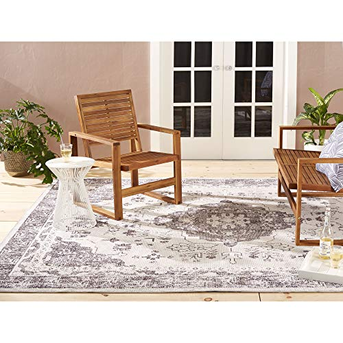Home Dynamix Nicole Miller Patio Starlight Willow Indoor/Outdoor Area Rug 7'9