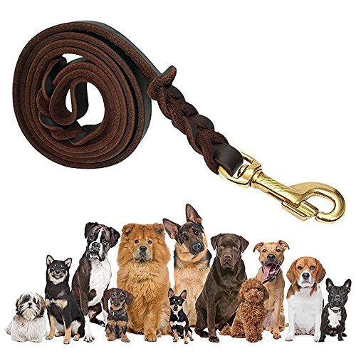 FOCUSPET Leather Dog Leash 6 ft Leather Dog Training Leash Pet Braided Dog Leash for Large Medium Leads Rope Dogs Walking&Training (1/2 (Brown Leather Dog Lead)