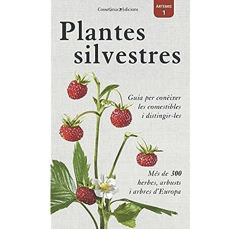 Plantes silvestres (Àrtemis): Amazon.es: Bastgen, Christa, Schröder, Berko, Zurlutter, Stefanie: Libros