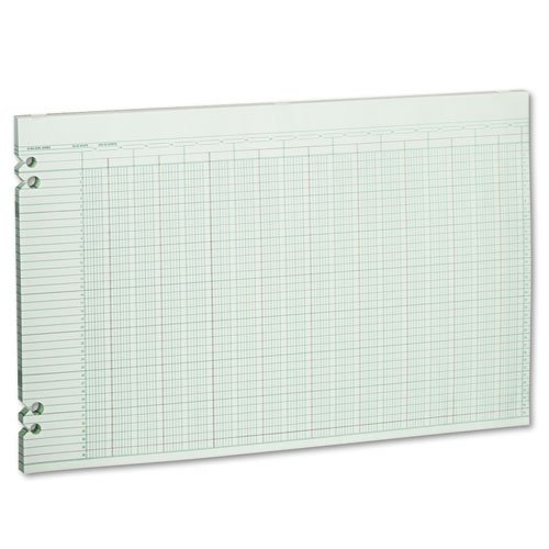 Wilson Jones - Accounting Sheets, 30 Columns, 11 x 17, 100 Loose Sheets/Pack, Green G50-30 (DMi PK ()