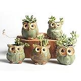 Cheap NOVMAY 2.5 Inch – Mini Vintage Owl Ceramic Succulent Plant Pot Planters Flower Pot Container (Dark color (Set of 5 pcs))