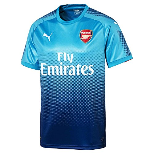 English Premiership Licensed Replica Jersey , Arsenal L, ()