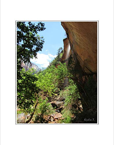 8x10 Photo Print with White Matting, Signed (fits 11x14 Picture Frame) – Southwestern US Series, Grotto Waterfall Cliff ()