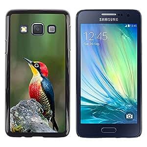 Be Good Phone Accessory // Dura Cáscara cubierta Protectora Caso Carcasa Funda de Protección para Samsung Galaxy A3 SM-A300 // green nature spring tropical songbird