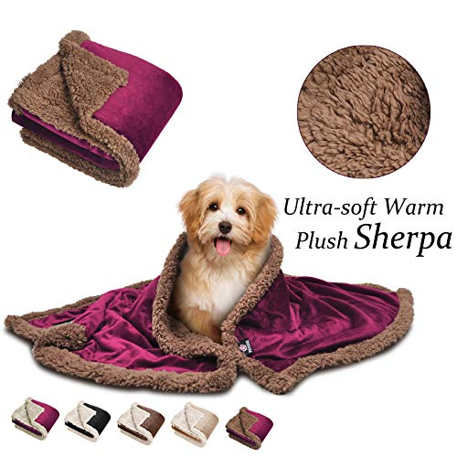 (Pawsse Sherpa Puppy Blanket for Small Dogs Kitten, Warm Flannel Plush Pet Bed Blanket Reversible, 45