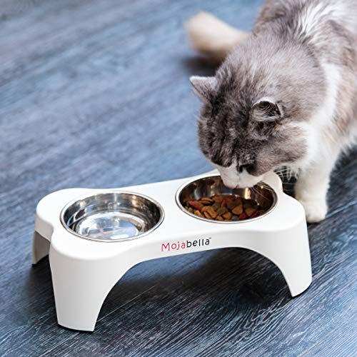 Mojabella Small Raised Cat Bowls-Elevated Dog Bowls for All Cats and Very Small Breed Dogs & Puppies