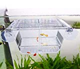 Capetsma Fish Breeding Box, Acrylic Fish Isolation Box with Suction Cups, Aquarium Acclimation Hatchery Incubator for Baby Fishes Shrimp Clownfish and Guppy. Small Size (S)