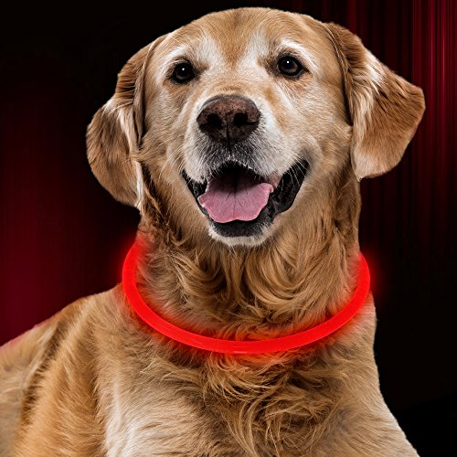 Bseen Led Dog Collar   Cuttable Water Resistant Glowing Dog Collar Light Up  Battery Powered Pet Necklace Loop For Small  Medium  Large Dogs  Ruby Red