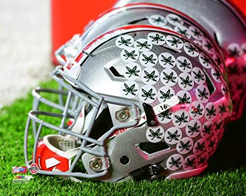 Ohio State Buckeyes NCAA Helmet Photo (Size: 8