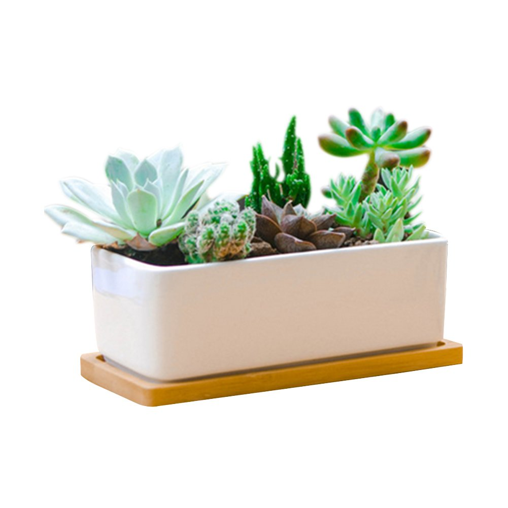 6.5 Inch Rectangle White Ceramic Succulent Planter Pot Decorative Cactus Plant Pot Flower Container with Bamboo Tray by LANKER