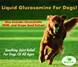 Liquid Glucosamine For Dogs (16 Fl. Oz.) Also Contains Chondroitin, MSM and Grape Seed Extract – Natural Anti-Inflammatory Pet Supplements – Benefits Include Canine Arthritis, Joint Pain and Hip Dysplasia Relief, Cartilage Repair, and Skin/Coat Health – Made In The USA, My Pet Supplies