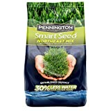 Pennington 100526638 Smart Seed Northeast Mix Grass Seed, 7 LB