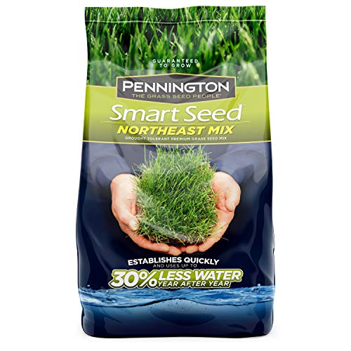 Pennington 100526638 Smart Seed Northeast Mix Grass Seed, 3 LB (Best Grass Seed Mix For New England)