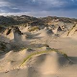 Dune Worship