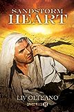 Sandstorm Heart (Space Files R Book 2)
