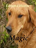 MAGIC (Dog Mysteries Book 1)