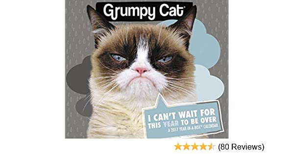Grumpy Cat Year In A Box Calendar 2017 Year In A Box