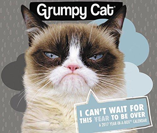 Grumpy Cat Year In A Box Calendar (2017): Year In A Box: 0038576090675:  Amazon.com: Books