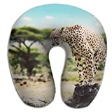 AXZC5pm Memory Foam Neck Pillow,The Leopard That Stands On Dead Wood Travel U-Shaped Pillow