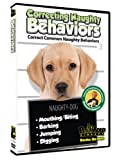 Dog & Puppy Training DVD: Correcting Naughty Behaviors! Stop the Biting, Digging & Barking!