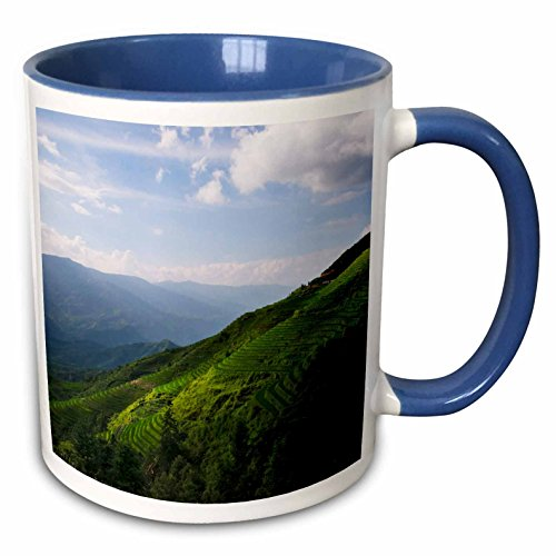 3dRose Danita Delimont - Agriculture - Rice terraces, Longsheng, Guangxi Province, China - 15oz Two-Tone Blue Mug (mug_225543_11) ()
