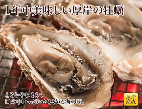 北海道 厚岸 産 殻付 牡蠣 【生食用・獲れたてを直送でお届け】 Lサイズ (1個 80~120g) × 15個 ( 牡蠣ナイフ付き)