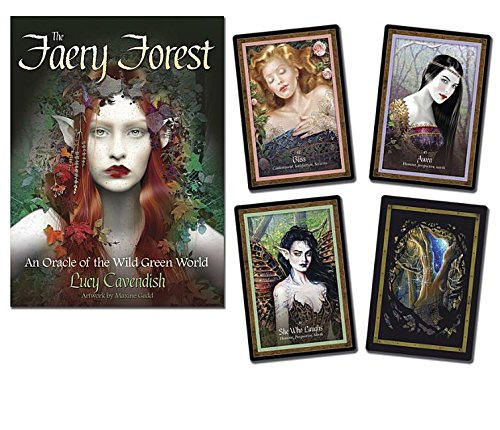 Oracle Of Shadows And Light Tarot Card Deck in US - 6