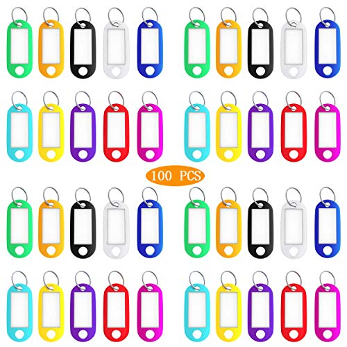 100 PCS Key Ring Tags Bulk,Rectangle Tough Plastic Keychain Tags Luggage Pet ID Label Tags with Split Ring Label Window for Hotel Office School Gym,10 - Rectangle Key Tag