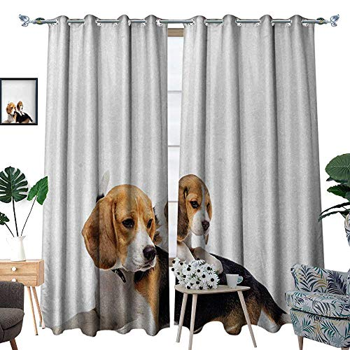 RenteriaDecor Beagle Window Curtain Fabric Cute Family with Mother and Baby Puppy Domestic Fur Animal Photography Drapes for Living Room W84 x L108 Pale Caramel White Black