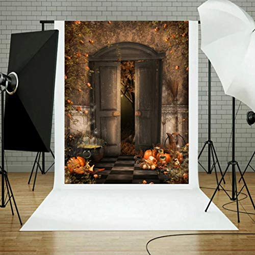 vmree Indoor Photographic Studio Backdrop, Halloween Themed Photo Shooting Background Props Wall Hanging Screen Post-Production Curtain Folding & Washable Art Cloth 3x5FT. (G) -