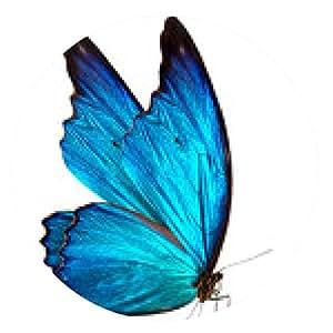 alfombrilla de ratón mariposa de fondo macro - ronda - 20cm