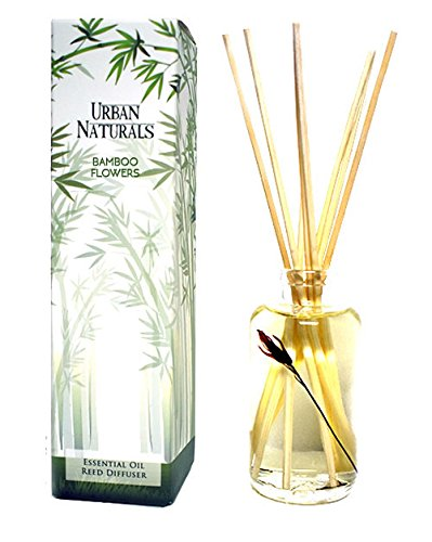 Urban Naturals BAMBOO Home Fragrance Reed Diffuser Oil with Sticks | Fresh Bamboo, Black Musk, Japanese Cypress | Scented Room Diffuser by Urban Naturals