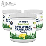 Dr. Berg's Natural Lemon Flavored Wheat Grass Powder with KamutTM -Raw & Ultra-Concentrated Nutrients -Rich in Vitamins, Chlorophyll & Trace Minerals (3 Pack)