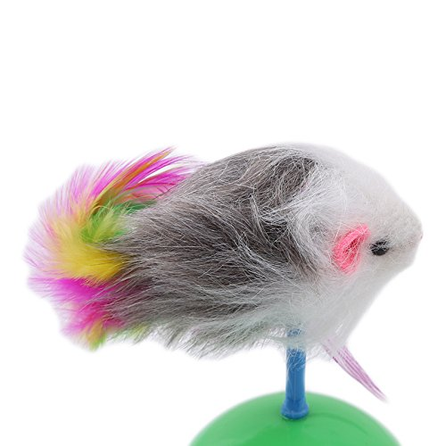 Amazon.com : Best Quality Durable pet cat Toys Favorite Fur Mouse Tumbler Plastic Toys Balls for Cats Dogs Play speelgoed kat Interactive Toys : Pet ...