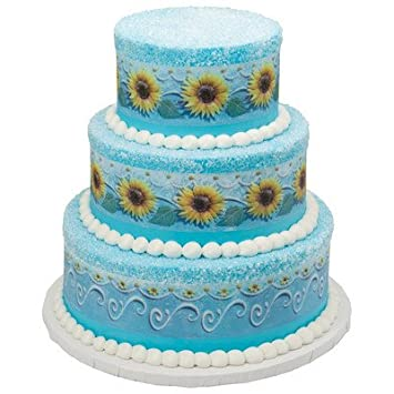 Frozen Fever Annas Birthday Cake Edible Image Border Designer Prints