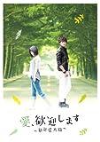 愛、歓迎します~歓迎愛光臨~DVD-BOX