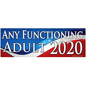 Any functioning adult 2020 sticker fs677 laminated political funny bumper car truck window election vinyl decal usa