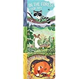 In the Forest: Look Up, Look Around, Look Down (3 in 1 Tall Padded Board Book)