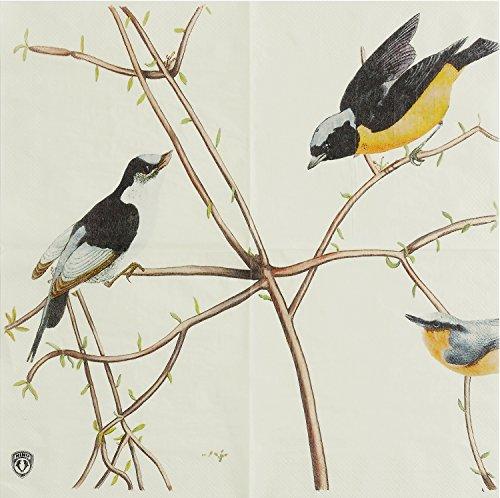 Alink Spring Birds Paper Napkins, 20 Count Shabby Chic Napkins for Wedding, Dinner Tea Party Shower