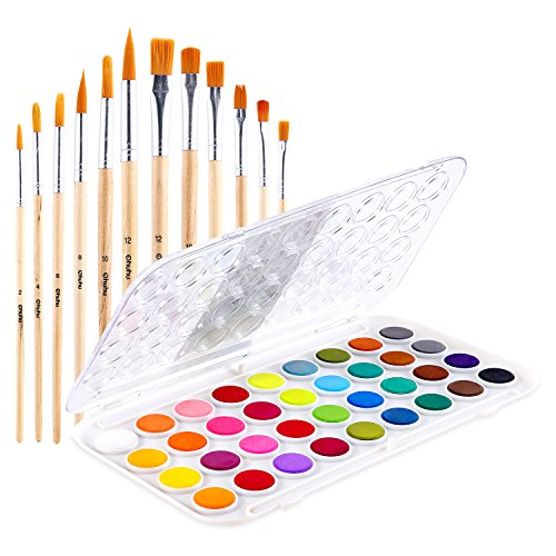 Fundamentals Watercolor Artist Set, 36-Color Ohuhu Watercolor Pan Set Water Color Set, Bonus a Variety of 12 Paintbrushes for Watercolor Paints, Acrylic Painting, Back to School Supplies by Ohuhu