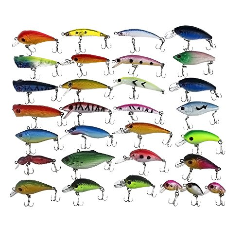 Lures Fish (APG 30pcs 3D Eyes & Bright Color Crankbait Assorted Fishing Lures Spinner Baits Fish Hooks Tackle)