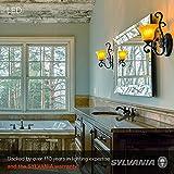 SYLVANIA LED Light Bulb Value Line, 60W A19 Soft