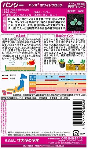 サカタのタネ 実咲花5602 パンジー パシオ ホワイトブロッチ 00905602