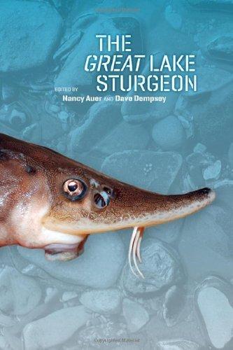 The Great Lake Sturgeon - Great Michigan Lakes Mall